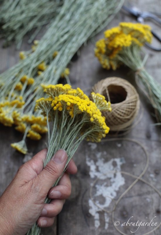 elicriso bouquet
