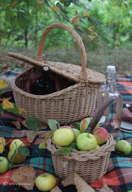 pic-nic-autunnale