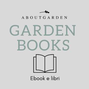 Ebook e libri