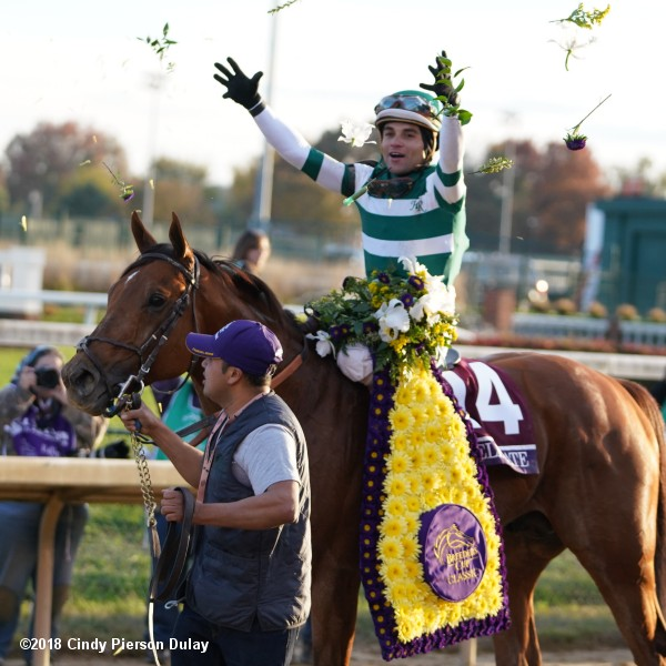 2018 Breeders Cup Classic Results