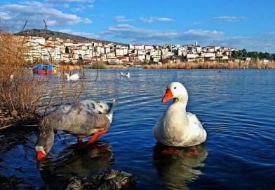 Υψηλές θερμοκρασίες στην Καστοριά τις επόμενες ημέρες – Ευκαιρία για μπανάκια!