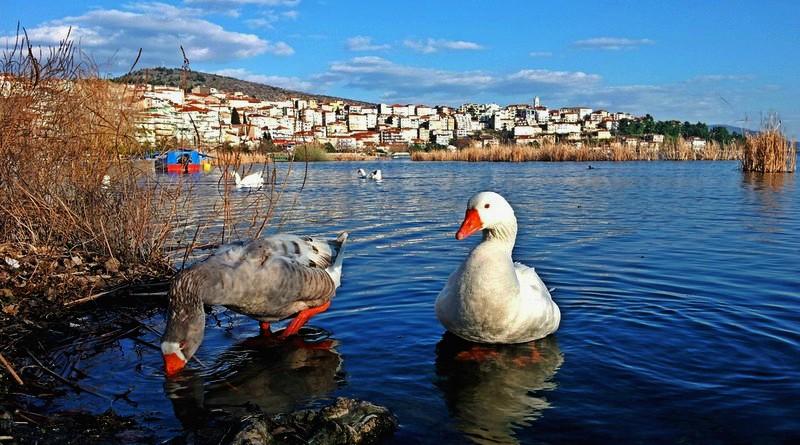 Καστοριά: Τόπος να ζεις ή να απομακρυνθείς; - AboutKastoria.gr
