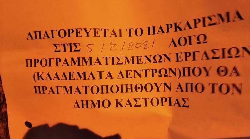 Ξεκινούν τα κλαδέματα δέντρων στην πόλη της Καστοριάς