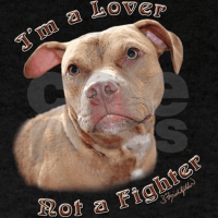 Pit bull tshirt im a lover not a fighter