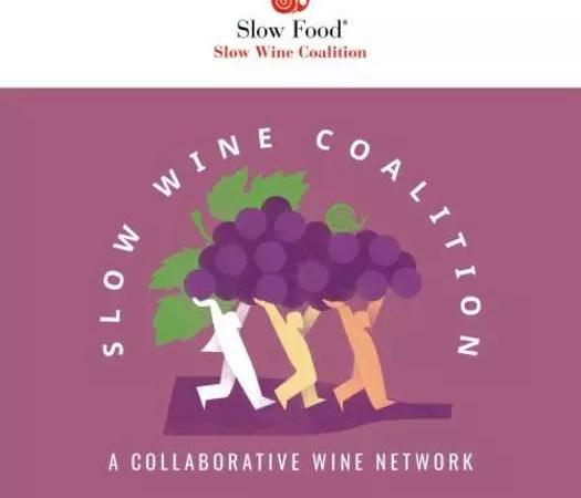 Slow Wine Coalition: новый проект Slow Food International