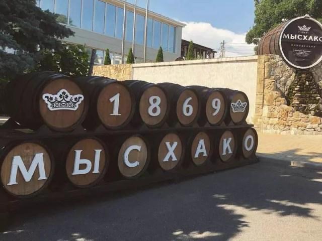 «Мысхако» строится и наращивает площади виноградников