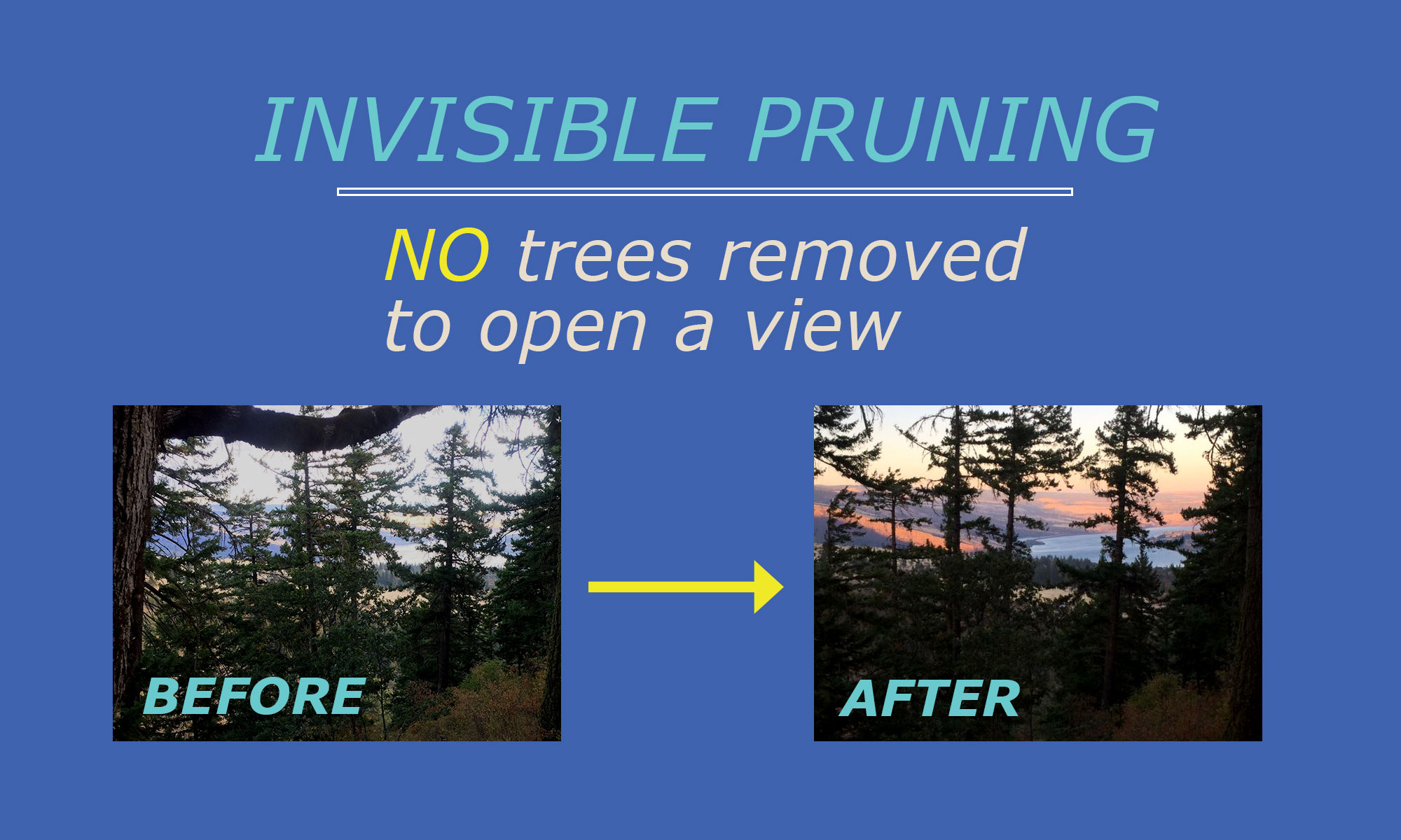 Invisible pruning before and after