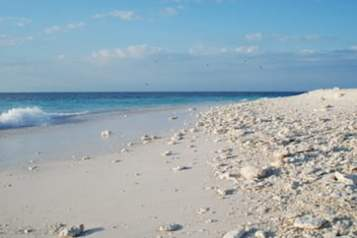 Wilson Island beach