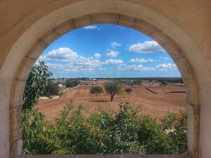 View from Trullo Gallo Rosso