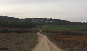 Cassino – Jerusalem: Day 93 Ein Karem