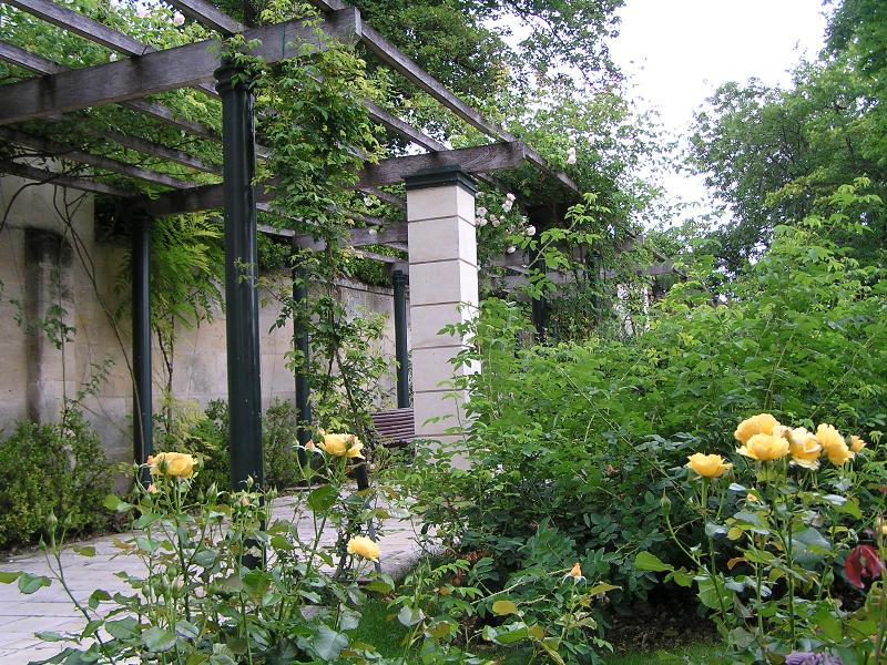 Acheter Pergola Rosier Abri Jardin Bois France