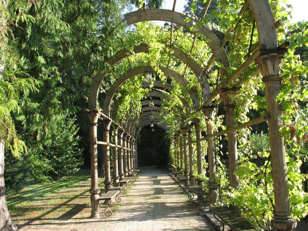 tonnelle métallique jardin