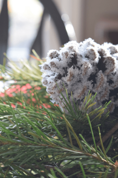 How to Make the Easiest DIY Snow Pinecones