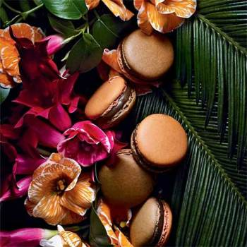 "alt=""photo Macarons Jardin Du Sultan Pierre Herme"""