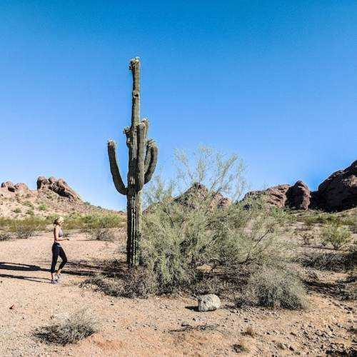 The Best Time to Visit Phoenix & Scottsdale