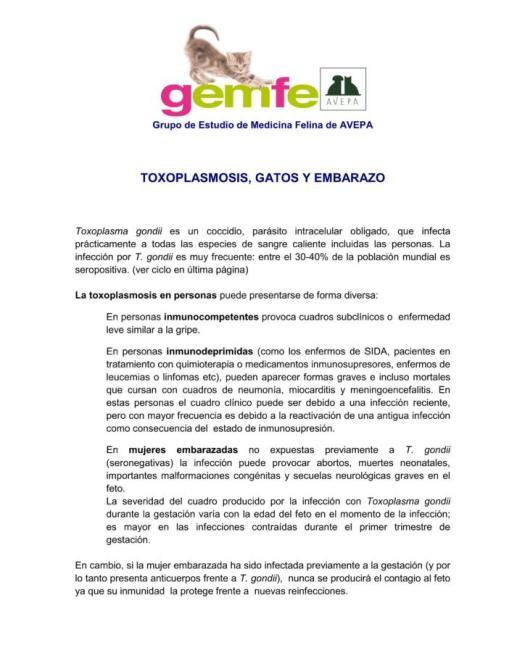 Posicionamiento GEMFE ante toxoplasmosis