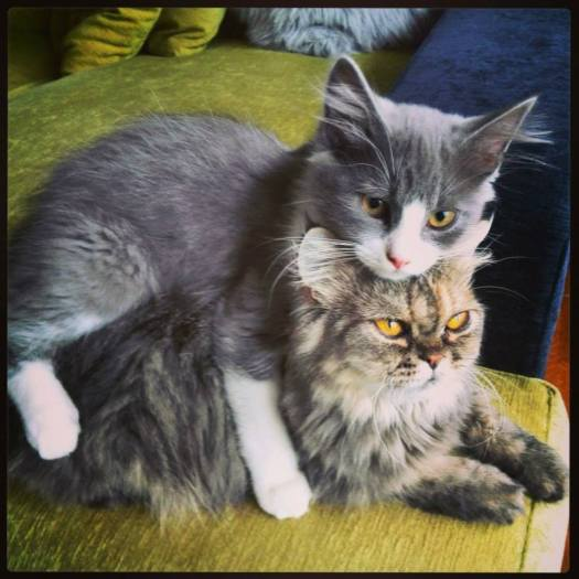 Mia y Lenny
