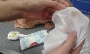 Limpieza con toallita para retirar los restos del limpiador y eliminar la suciedad