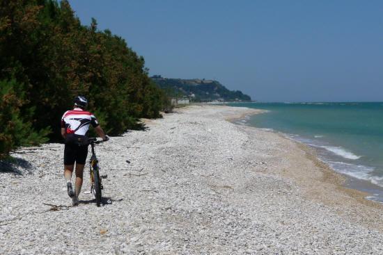 Pista ciclabile Ciclovia Adriatica a Cupramarittima
