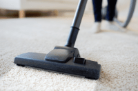Absolute Carpet Care | Carpet Cleaning Professionals in ...
