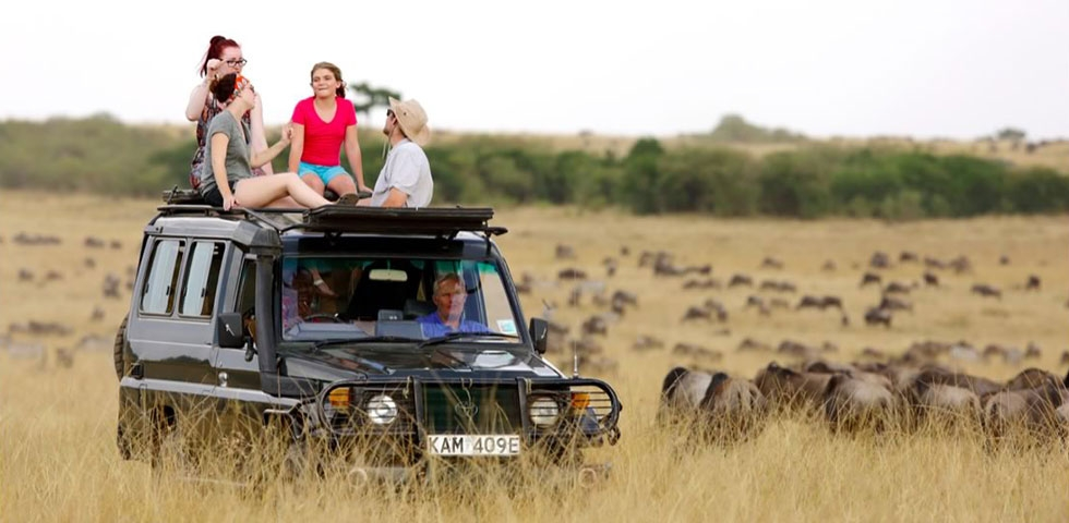 Kenya and Tanzania budget safari tour Tanzania Safari Tours/ Africa Budget Safari / Tanzania Budget Safari / African Safari Holiday