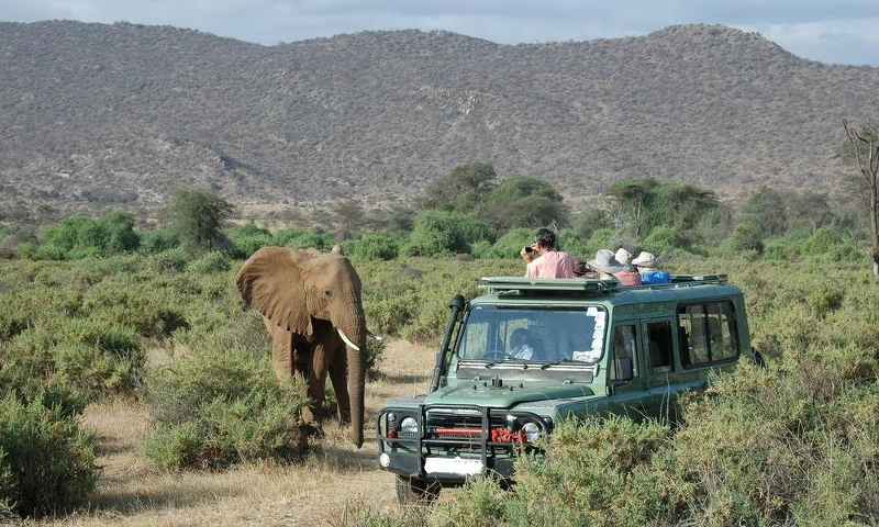 Wild Kenya Adventure Safari