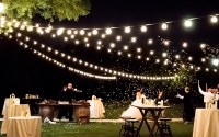 Cafe Lights | String Lights | Absolute Lighting