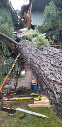 Puget Sound Fire House Tree Rescue (3)