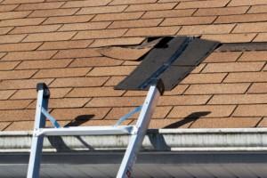 fix roof leaks