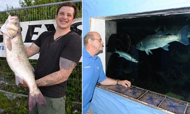 Matthew Clark, vince gara con pesce rubato all'acquario