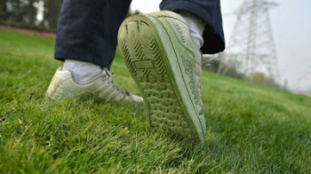 "Pitturano l'erba per rendere i residenti ""più briosi e produttivi"""