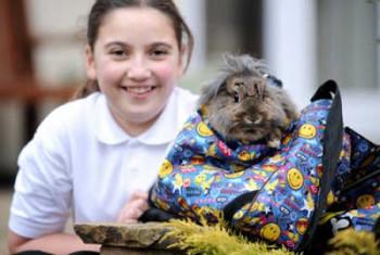 Arriva a scuola e trova il suo coniglietto nello zaino