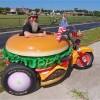 Harry, il più grande fan degli hamburger (2)