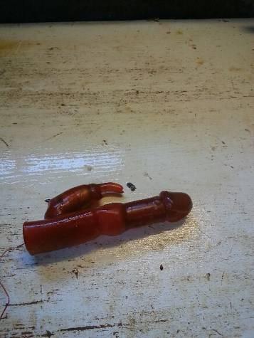 Pescatore trova un vibratore dentro a un merluzzo (2)