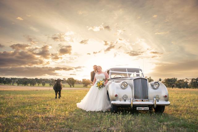 I migliori photobomber ai matrimoni (3)