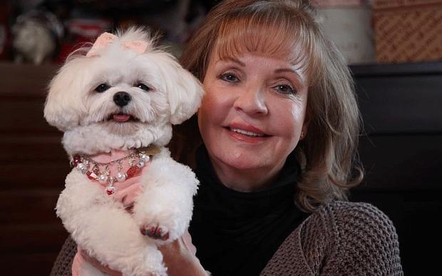 Lascia in eredità 1 milione di sterline al cane invece che ai due figli (1)