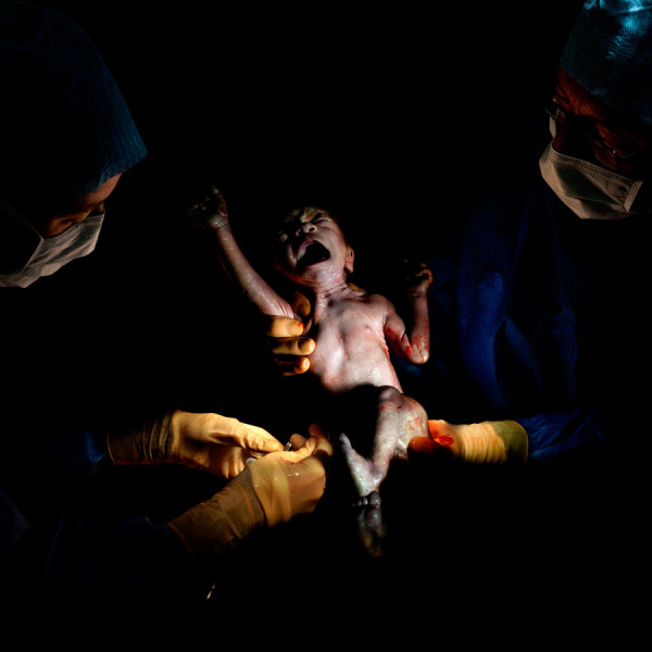 Christian Berthelot cattura i primi attimi di vita dei neonati (4)