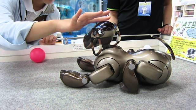 Giappone: funerali per i cani-robot che si rompono