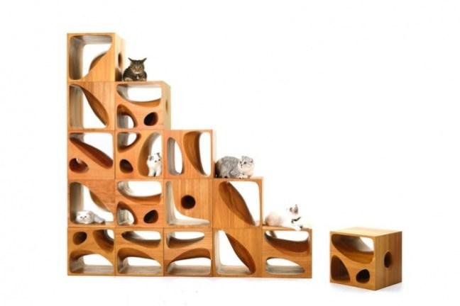20-invenzioni-del-2015-sedute-per-gatti