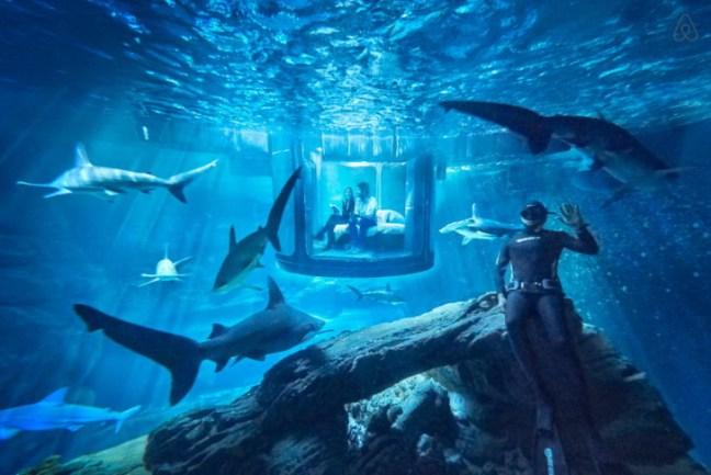squali-airbnb