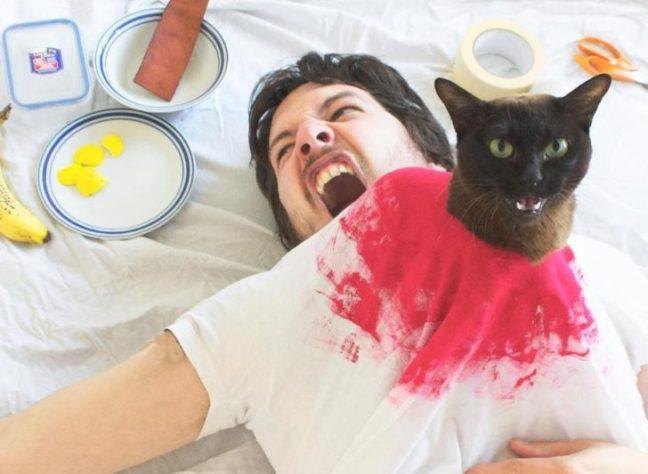 Ricrea scene di film famosi con il suo gatto3