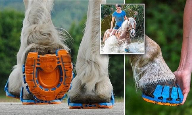 megasus-scarpe-da-corsa-cavalli