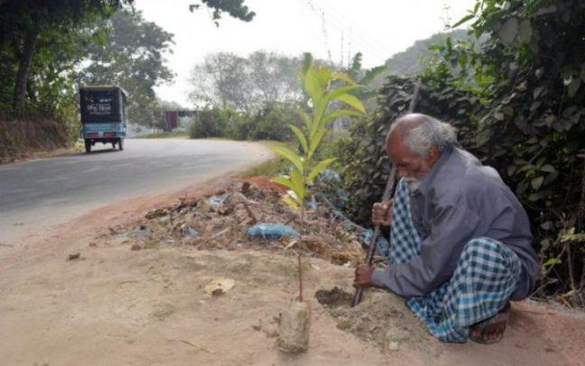 pianta-un-albero-al-giorno