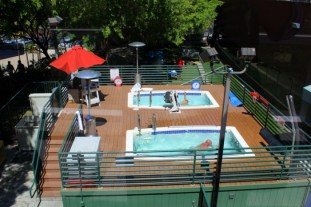 google-piscine