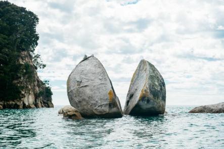 Yeni Zelanda doğası absurdizi.com