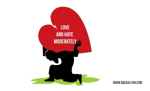 Love and Hate Moderately