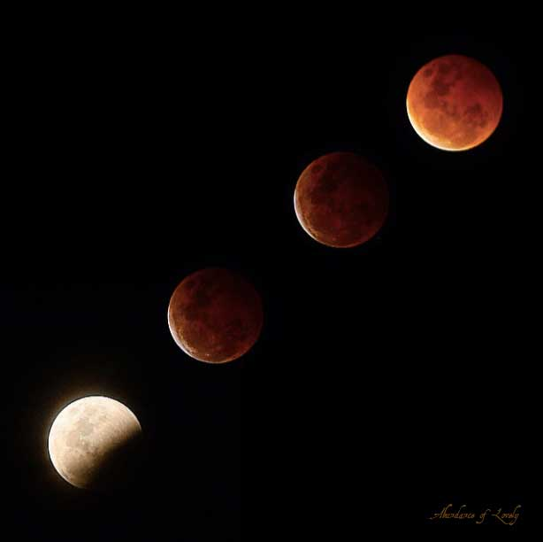 lunar ecplise, moon, sky, night, astronomy, photography, blood moon