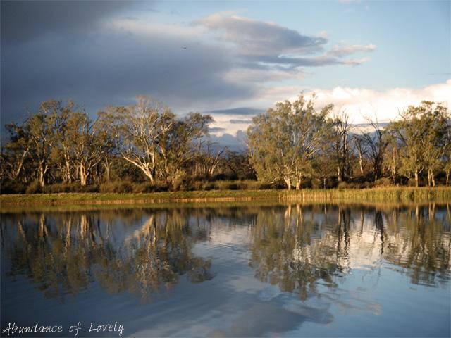 Reflector-River