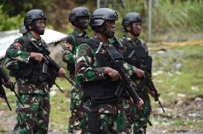Tugas dan Fungsi TNI