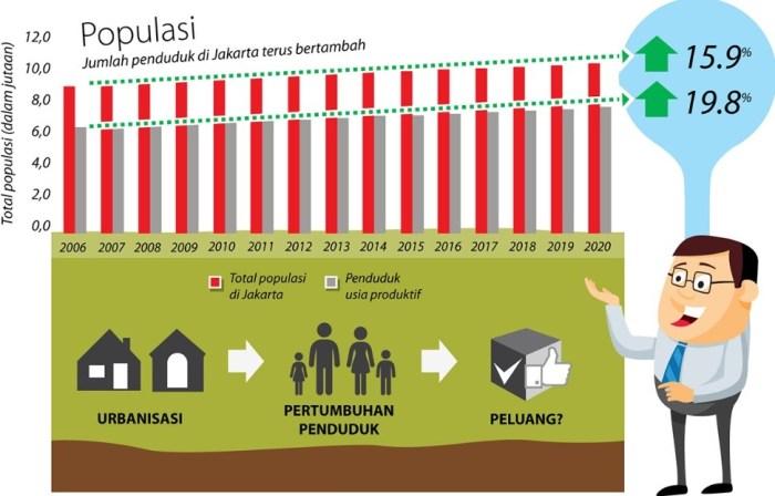 Demografi Indonesia
